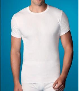 Camiseta 206 abanderado